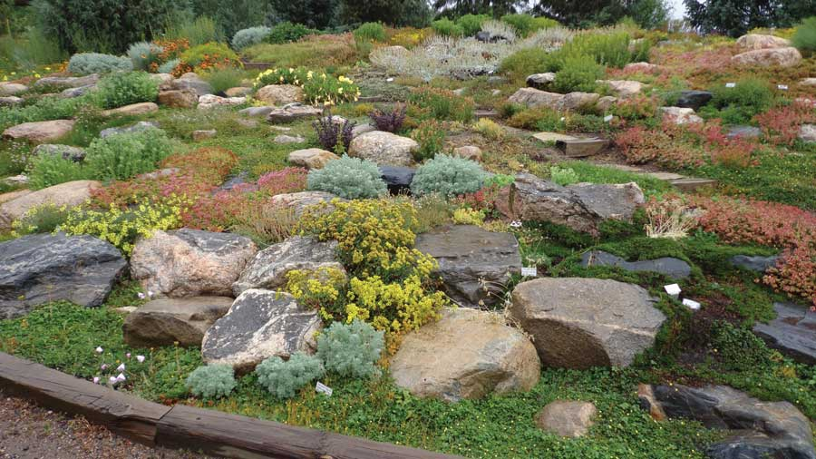Exceptional High Altitude Gardening Yampa River Botanic Park 3