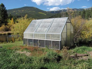 In October, Joanne Lederhos still harvests plenty of tomatoes, while her neighbors at Bailey's 9,000-foot elevation are unable to grow them at all. In a properly constructed greenhouse, SunnyTherm (the six gray panels at the bottom of the greenhouse) should keep temperatures warm enough for winter crops, with supplemental heat recommended on nights that go below -20degrees.